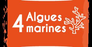 4 algues marines