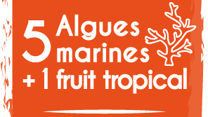 5 algues marines + 1 fruit tropical