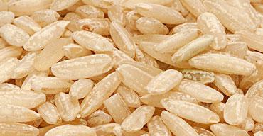 son de riz biodyne