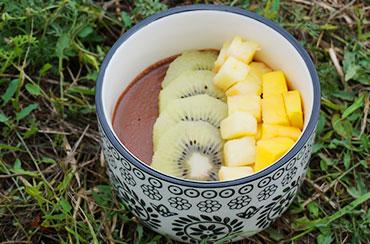 Porridge Biodyne Dattes Pommes Gingembre